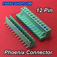 12P-phoenix-1